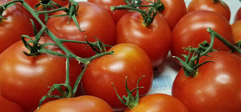 5280 produce denver